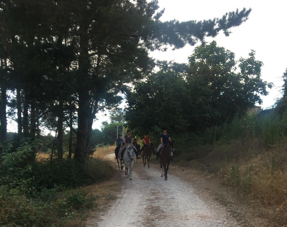 Paardrijden door de bossen van de Costa de Prata