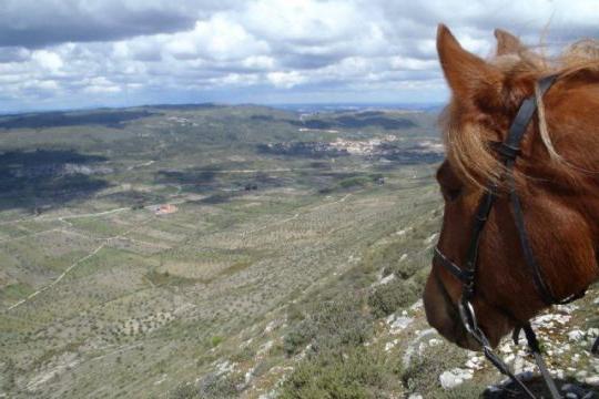 Paardrijden in de Serra e Candeeiros